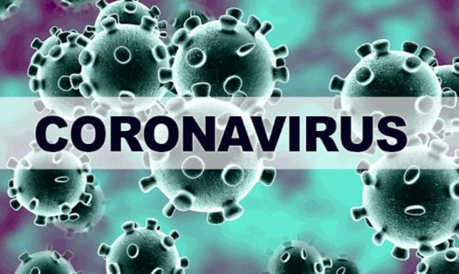 신종 코로나 바이러스, 기하급수적으로 환자 증가 추세